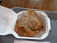 Dumplings 2a